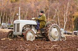 Ferguson TE-20 at Sherwood Ploughing Match, Budby, Notinghamshire, November 2017. Photo: Neil Houltby