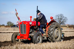 Massey Ferguson MF35 at Collingham Ploughing Match, Swinderby, Lincolnshire, February 2018. Photo: Neil Houltby