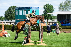 Working Hunter Ponies at Lincolnshire Show, Lincolnshire Showground, Lincolnshire, June 2018. Photo: Neil Houltby