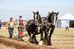 Horse and Plough at Flintham Show, Bingham, Notinghamshire, September 2018. Photo: Neil Houltby