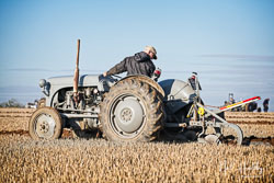 Ferguson TE-20 at Barton Upon Humber Ploughing Tournament, Worlaby Top, Lincolnshire, October 2018. Photo: Neil Houltby