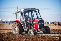 Masey Ferguson 362 at Barton Upon Humber Ploughing Tournament, Worlaby Top, Lincolnshire, October 2018. Photo: Neil Houltby