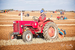 McCormick International B-250 at Barton Upon Humber Ploughing Tournament, Worlaby Top, Lincolnshire, October 2018. Photo: Neil Houltby