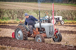 Ferguson FE35 at Sherwood Ploughing Match, Budby, Nottinghamshire, November 2018. Photo: Neil Houltby