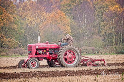 McCormick Farmall Super BMD at Sherwood Ploughing Match, Budby, Nottinghamshire, November 2018. Photo: Neil Houltby