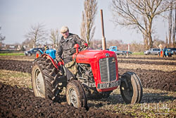 Massey Ferguson MF35 at Newborough Plouging Match, Newborough, Cambridgeshire, February 2019. Photo: Neil Houltby