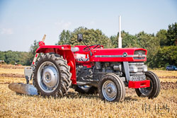 Massey Ferguson MF135 at NVTE Working Weekend, Bothamsall, Nottinghamshire, August 2019. Photo: Neil Houltby