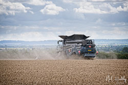 Massey Fergusen Ideal at Gathering the Harvest, East Bridgeford, Nottinghamshire, August 2019. Photo: Neil Houltby