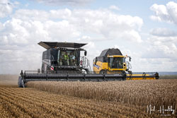 Massey Ferguson Ideal and New Holland Elevation CX8080 Combine at Gathering the Harvest, East Bridgeford, Nottinghamshire, August 2019. Photo: Neil Houltby