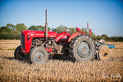 MasseyFerguson MF35 at Collingham Show, Collingham, Nottinghamshire, September 2019. Photo: Neil Houltby