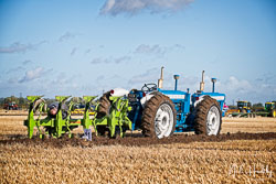 Doe 130 at Flintham and District Ploughing Match, Scarrington, Nottinghamshire, September 2019. Photo: Neil Houltby