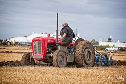 Massey Ferguson MF35 at Flintham and District Ploughing Match, Scarrington, Nottinghamshire, September 2019. Photo: Neil Houltby