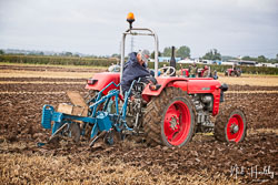 Zetor 3045 at Flintham and District Ploughing Match, Scarrington, Nottinghamshire, September 2019. Photo: Neil Houltby
