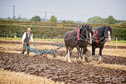 Horse and Plough at Flintham and District Ploughing Match, Scarrington, Nottinghamshire, September 2019. Photo: Neil Houltby
