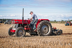 Massey Fersuson MF158 at North Notts Ploughing Match, Blyth, Nottinghamshire, September 2019. Photo: Neil Houltby