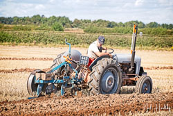 Ferguson TE20 at North Notts Ploughing Match, Blyth, Nottinghamshire, September 2019. Photo: Neil Houltby