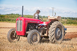 Massey Fersuson MF35 at North Notts Ploughing Match, Blyth, Nottinghamshire, September 2019. Photo: Neil Houltby