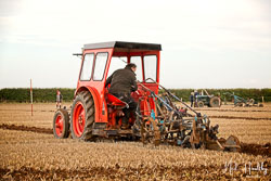 Case DEX at British National Ploughing Championship, Nocton, Lincolnshire, October 2019. Photo: Neil Houltby