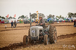 Ferguson FE35 at British National Ploughing Championship, Nocton, Lincolnshire, October 2019. Photo: Neil Houltby