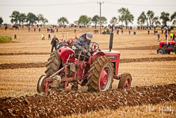McCormick International B275 at British National Ploughing Championship, Nocton, Lincolnshire, October 2019. Photo: Neil Houltby