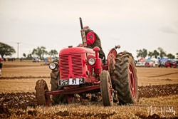 David Brown 25D at British National Ploughing Championship, Nocton, Lincolnshire, October 2019. Photo: Neil Houltby