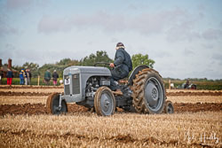 Ferguson T20 at British National Ploughing Championship, Nocton, Lincolnshire, October 2019. Photo: Neil Houltby