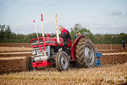Massey Ferguson MF135 at British National Ploughing Championship, Nocton, Lincolnshire, October 2019. Photo: Neil Houltby