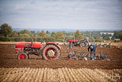 Zetor 4511 at British National Ploughing Championship, Nocton, Lincolnshire, October 2019. Photo: Neil Houltby