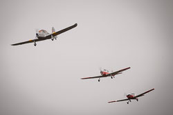 Scotish Aviation Buldog, DeHaviland Chipmunk and Percival P40 Prentice at Battle of Britain, Duxford Air Show, Imperial War Museum Duxford, Cambridgeshire, September 2018. Photo: Neil Houltby
